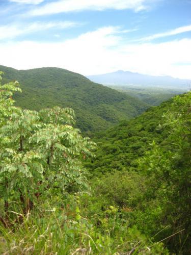 Xochicalco (área conservada)